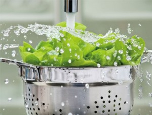 วิธีล้างผักให้ปลอดสารพิษ